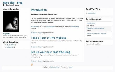 Screen shot of the blog website